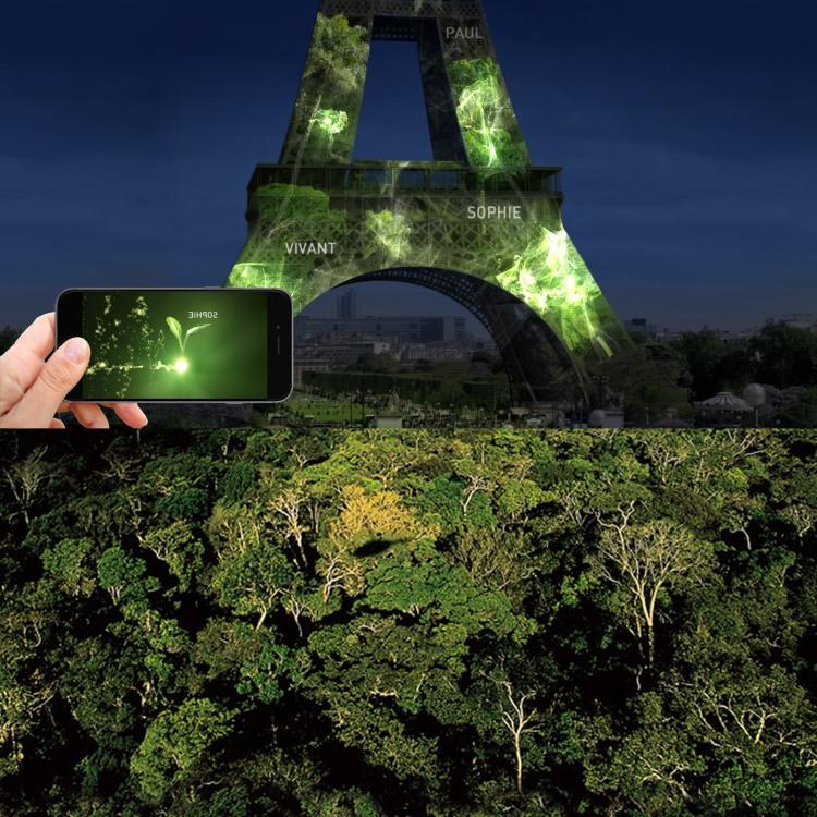 plantation virtuelle-réelle2